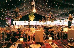 Starlight Starcloth Roof and Wall Drapes for Marquees