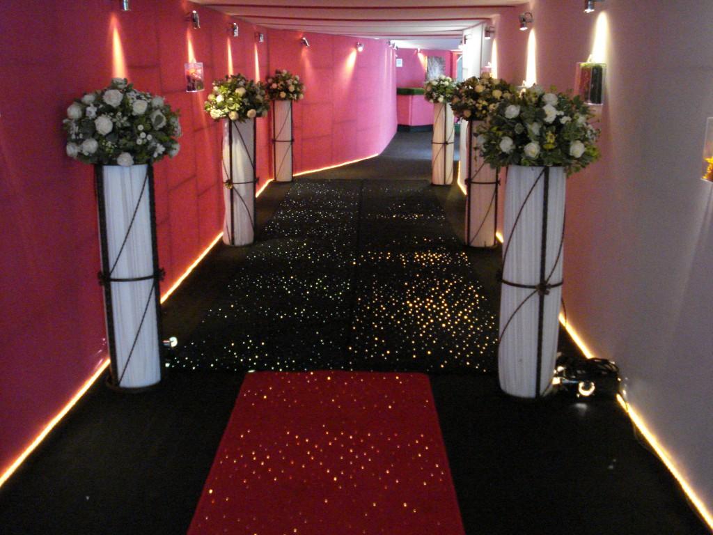 Black and Red Starlight Carpet Walkway